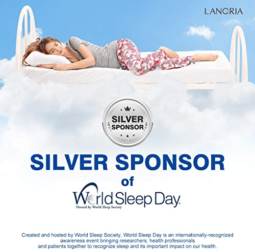 Luxury Cooling Pillow from Langria