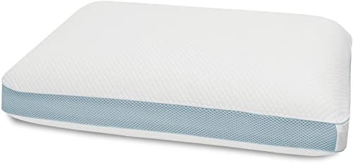 Performance Extreme Pillow from BioPedic