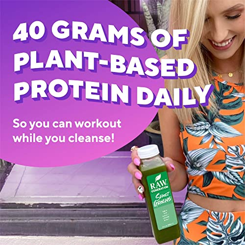 Day Protein Cleanse by Raw Generation