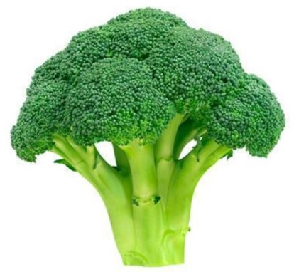 Broccoli: 25 Anti-Cancer Foods of All Time